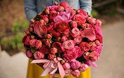 Fleur de Saint-Valentin