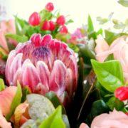 bouquet saline