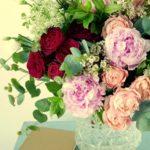fleurs primavera
